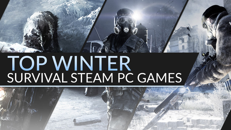 Top winter survival Steam PC games worth checking out | Fanatical